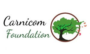 Carnicom Foundation Proposal & Summary