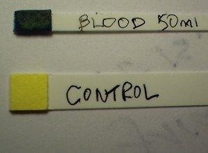 blood 26