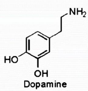 dopamine-300x311.jpg