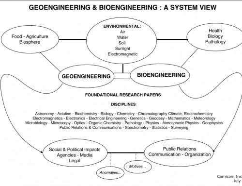 GeoEngineering – BioEngineering : A System View
