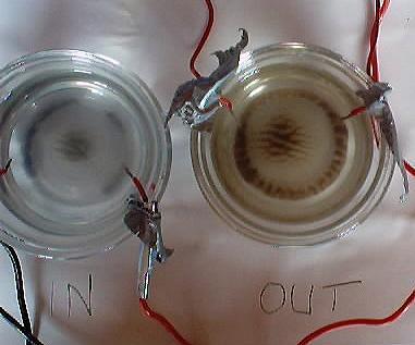 ELECTROLYSIS & BARIUM